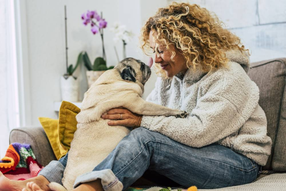 Woman having play time with dog