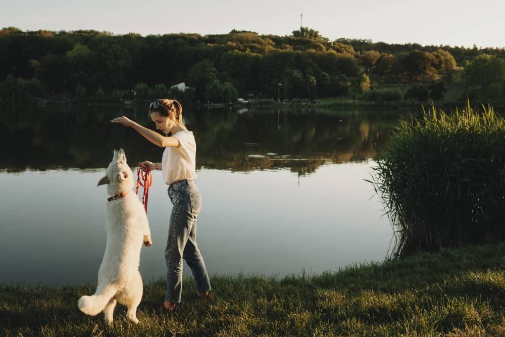 Woman training dog by lake