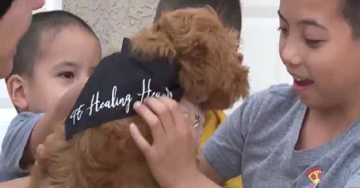 Family Adopts Puppy With 'Small Ear' For Boy With Same Condition