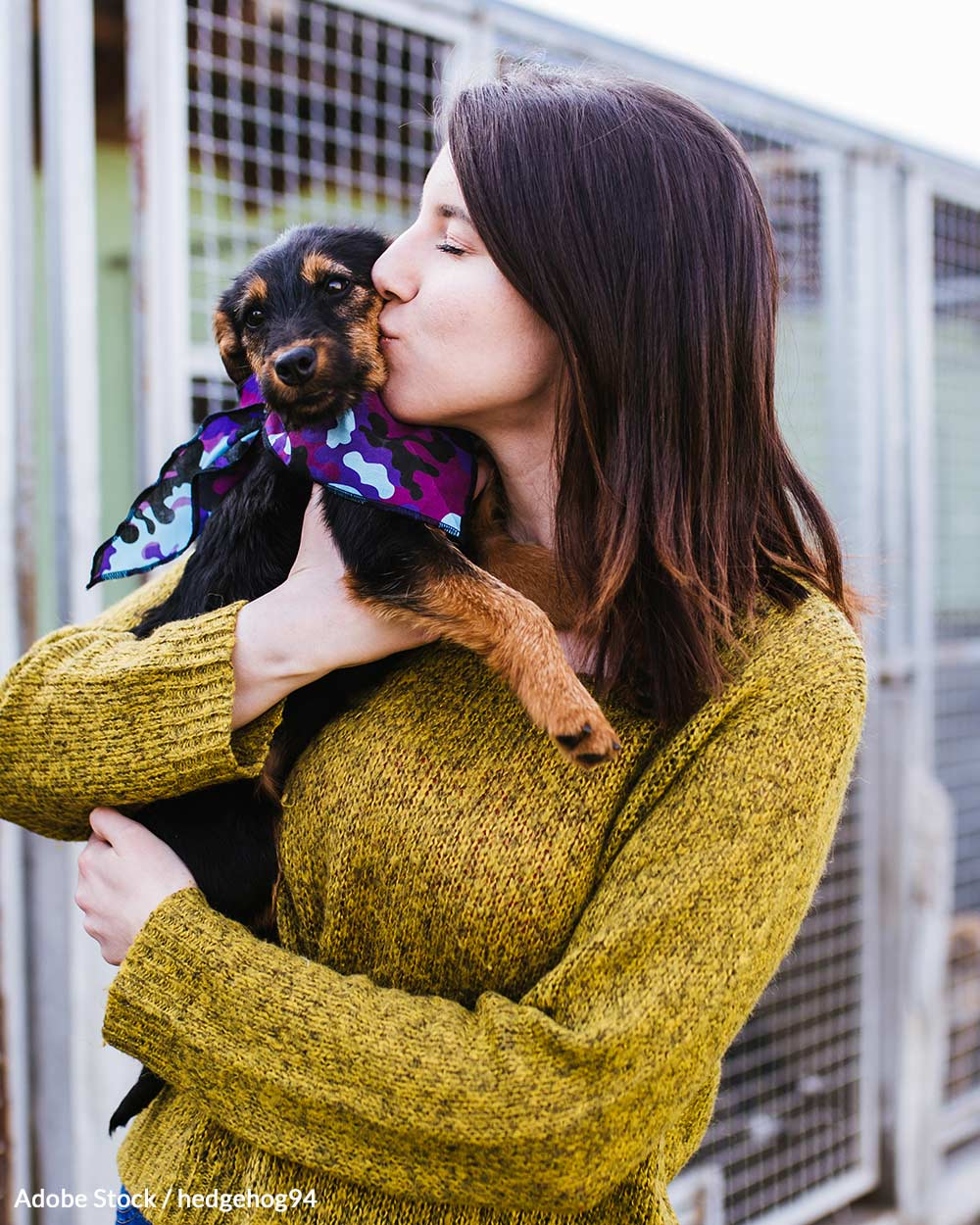 Adopt A Shelter Pet Month is observed in October.