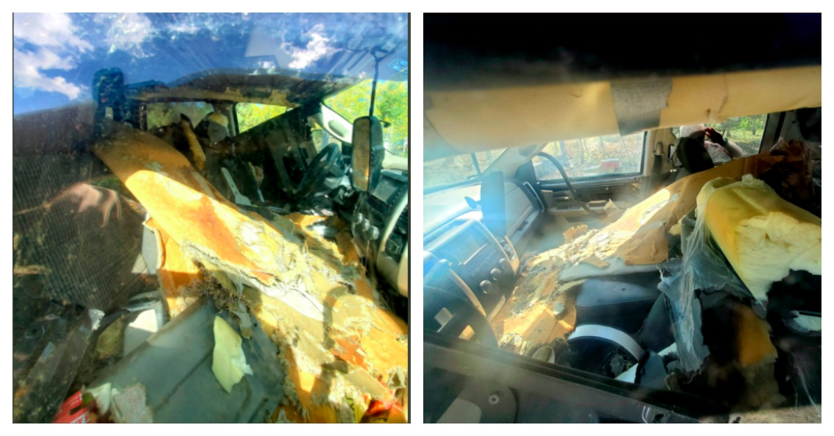 Black Bear Breaks Into Truck In Colorado And Destroys Interior Trying To Escape