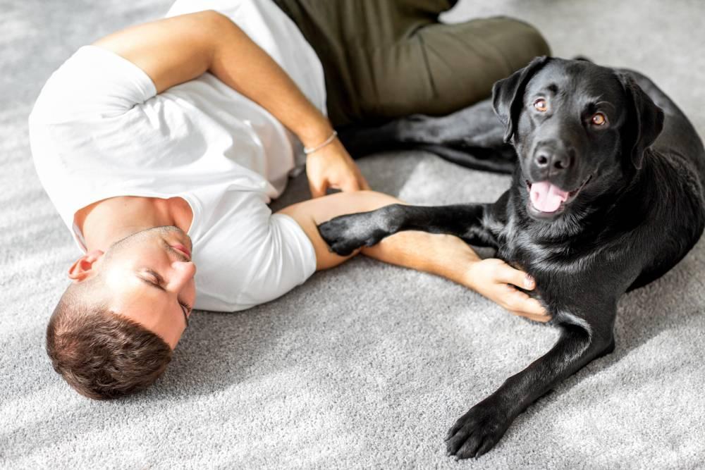 Man cuddling dog on floor