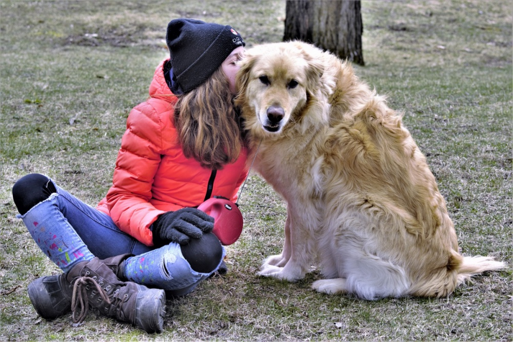 Separation Anxiety Worse In Dogs Or Dog Parents In 2021?