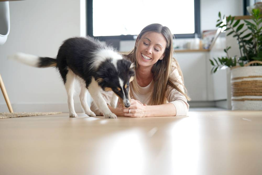 Woman and a dog playing on the floor